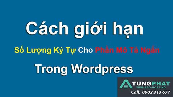 hàm giới hạn ký tự wordpress