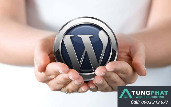 Tổng Hợp Hàm Giới Hạn Ký Tự Title, Content Của WordPress