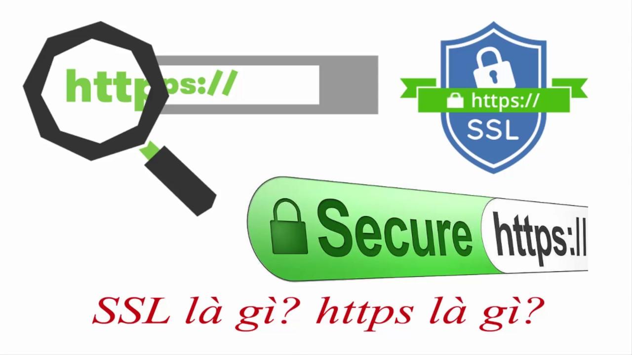 Hướng Dẫn Cài Đặt SSL Website Trên VESTACP VỚI LET'S ENCRYPT