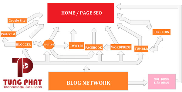 entity link building social blog network