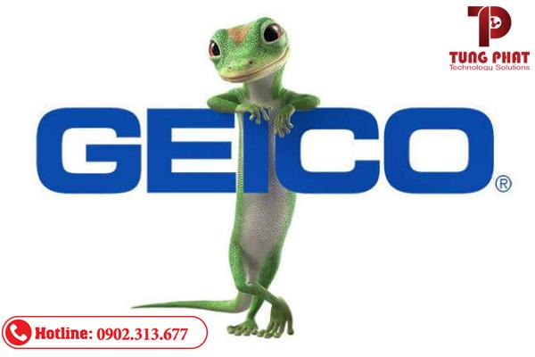 quản trị thương hiệu geico