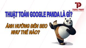 Thuật toán Google Panda là gì? Nó ảnh hưởng SEO như thế nào?